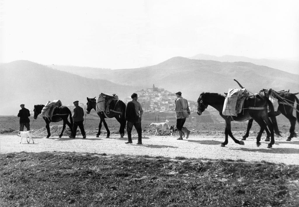 Lucania 60 - Ritorno dai campi